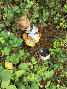 Child foraging