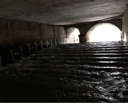 Figure 1. Fish and eel passage installed at Thorney weir in Thorney