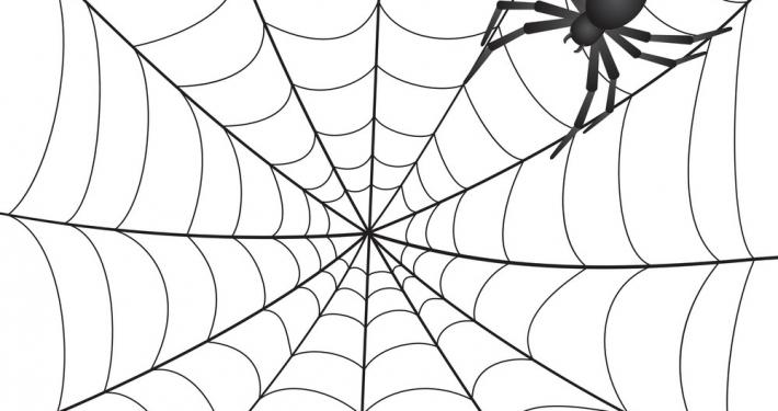 Spooky Spider Half Term Activity