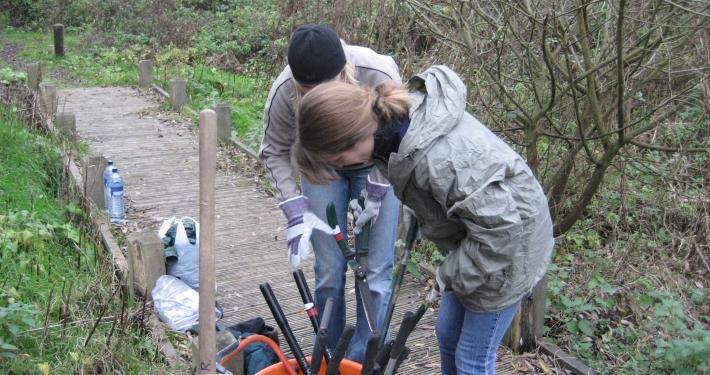Volunteer Task Arthur Jacobs Nature Reserve