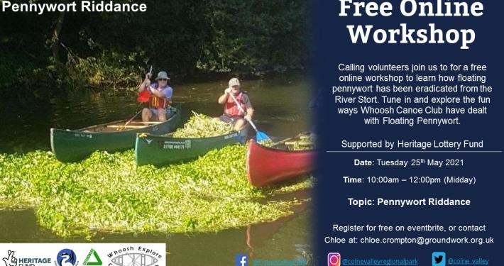 Pennywort Riddance - Online Workshop