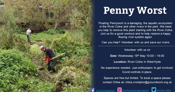 Penny Worst - Practical volunteer session West Hyde