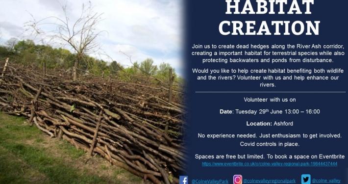 Habitat Creation Ashford