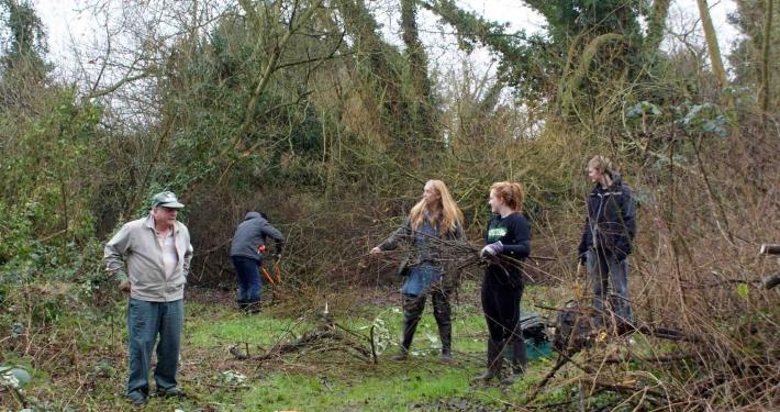 Volunteer Task at Crown Meadow